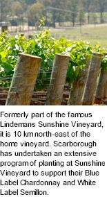 http://www.scarboroughwine.com.au/ - Scarborough